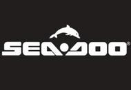 Seadoo Challenger 230 SE